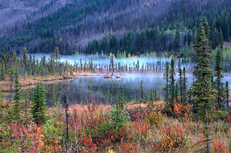 Banff to Jasper -215_6_7_8_9_tonemapped.jpg