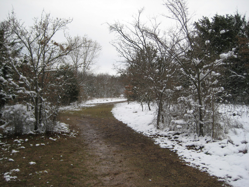 Looking up the trail - the snow didn't stick to the mud