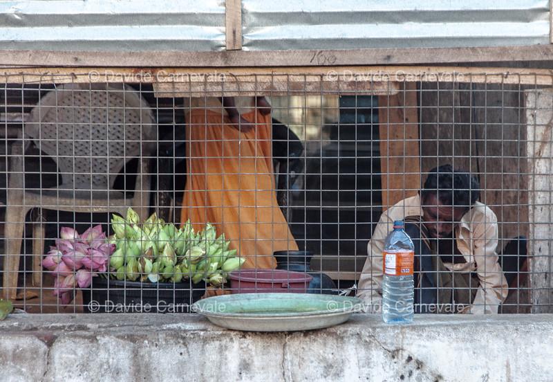 srilanka (39 di 74).jpg