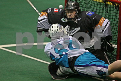 Rochester Knighthawks Crease Dives