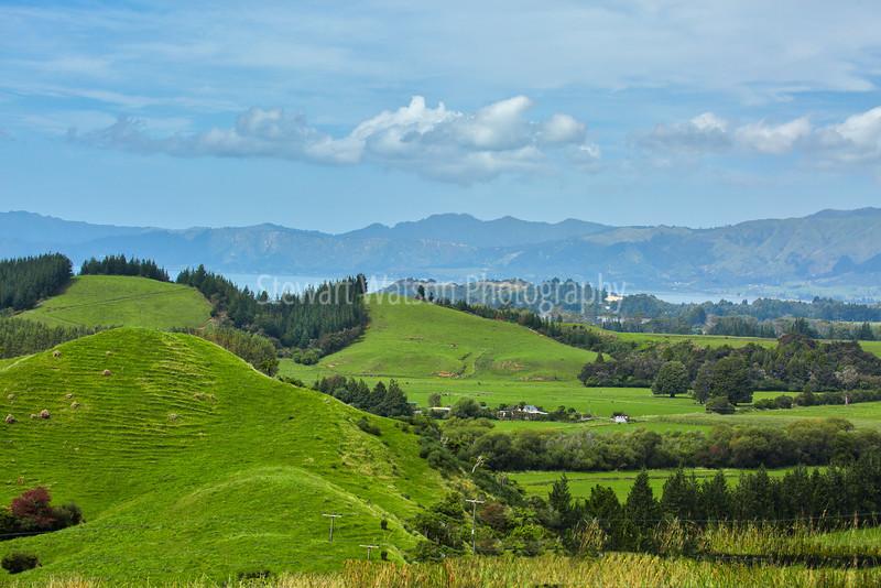 Takaka Valley Highway Nelson