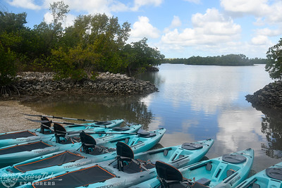 1230PM Mangrove Tunnel Kayak Tour - Bailey, Sinha & Jess