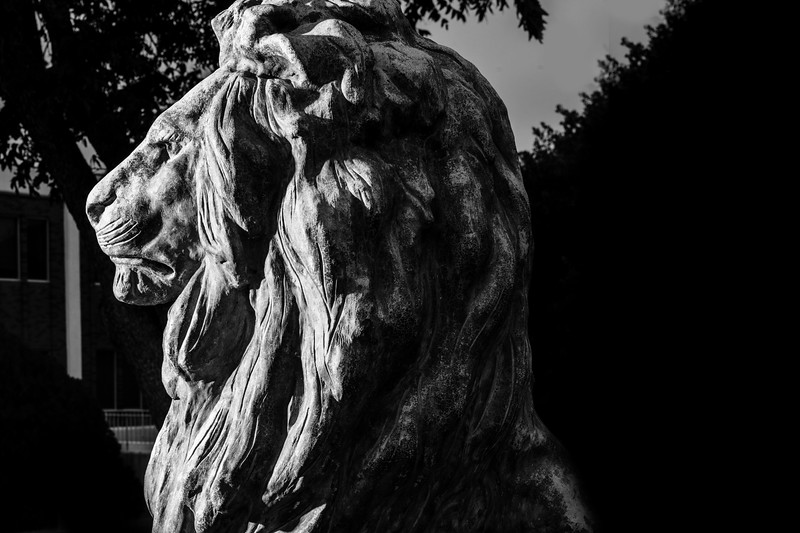 17022-Our Century as Lions-3194.jpg