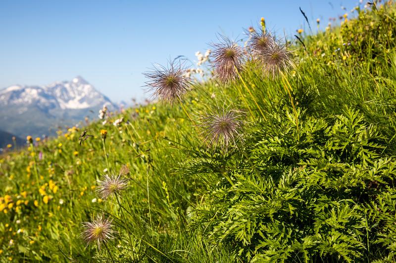 Cufercal-und-SB-Klettern-2019-5685.jpg