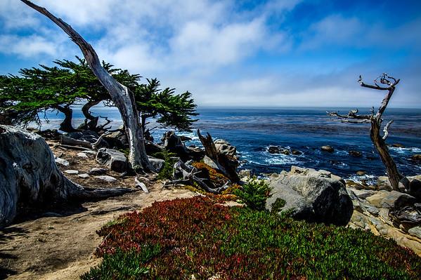 Scenery of the coast