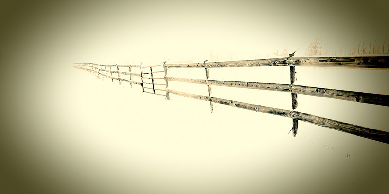 FenceB&W_alt.jpg