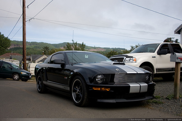 Shelby GT