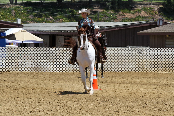 Pre Show Horsemanship and Metal