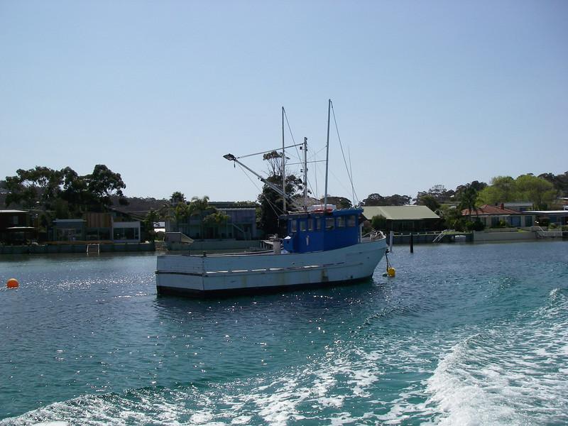 Sydney trip and Mirimbula 112.JPG