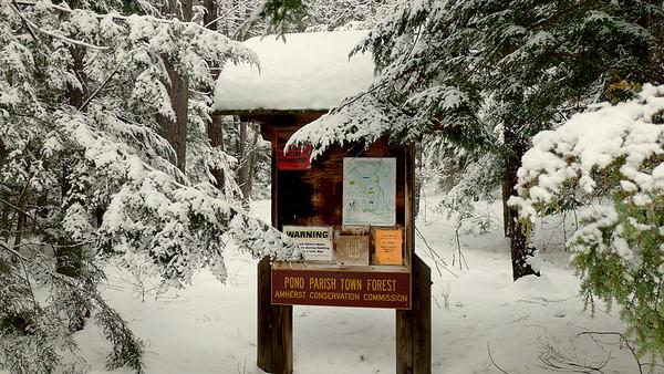 Pond Parish Nature Preserve, Amherst NH