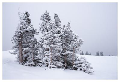 2014-12-28 Prairie Mountain