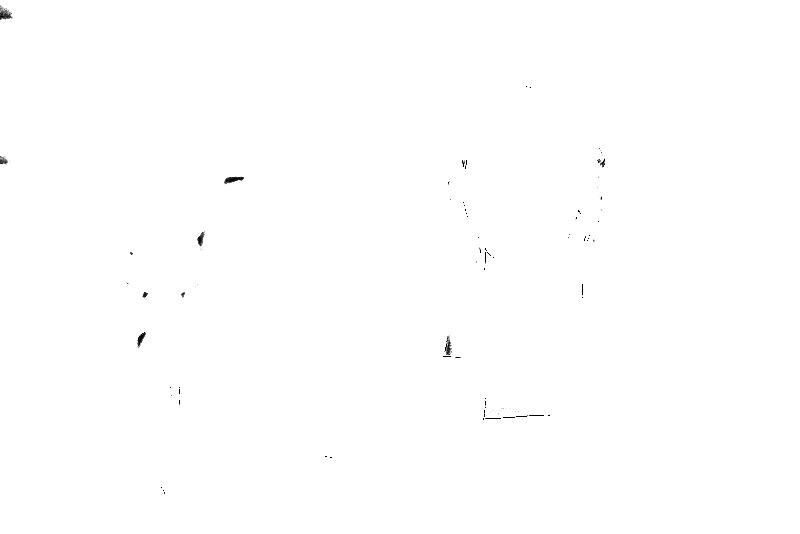 DSC09055.png