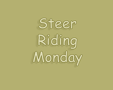 WOS 2018 Steer Riding Monday