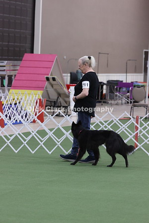 2021 BSCA Obedience Utility A