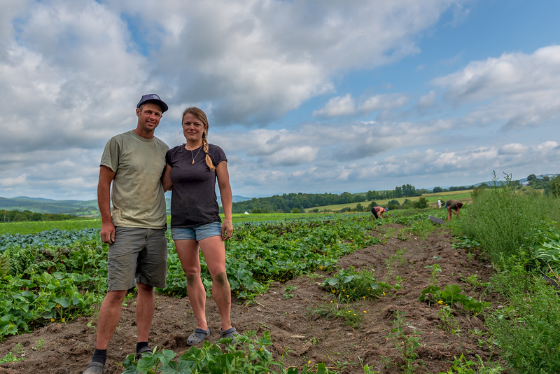 Bear Roots Farm - Williamstown
