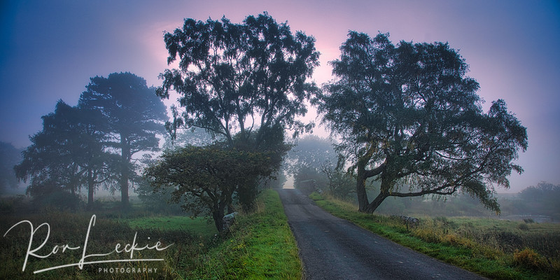 Road into the mist at sunrise - St Mary's Loch, Scotland