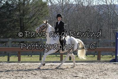 "Hunter Ring: Pre Children's Horse/Adult 2'6"" Fences O/F"