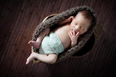 2011 Desmond | 2 weeks old
