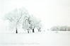 this is a color photo of a snowy day