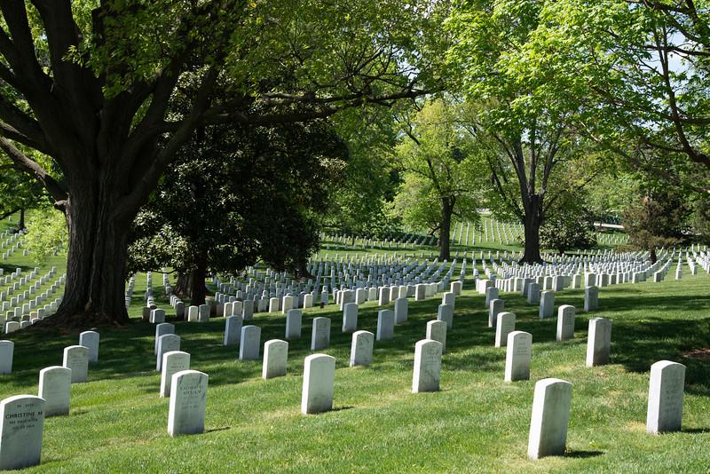 Arlington-161.jpg