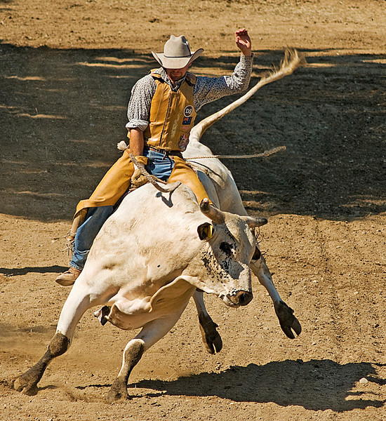 COOMBS RODEO-2009-3708A.jpg