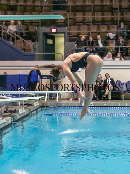 Swimming-diving vs Seton Hall_1349.jpg