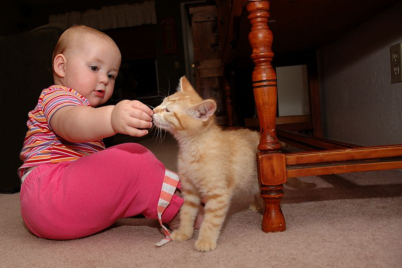 Lily and Oliver had fun playing together.