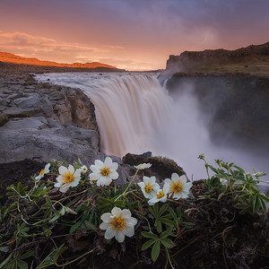 Summer Photo Workshop around Iceland