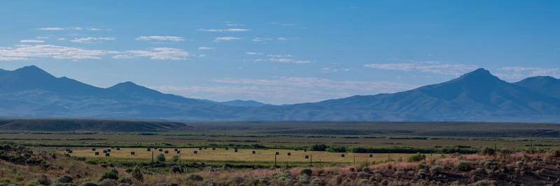 Nevada Hay Field