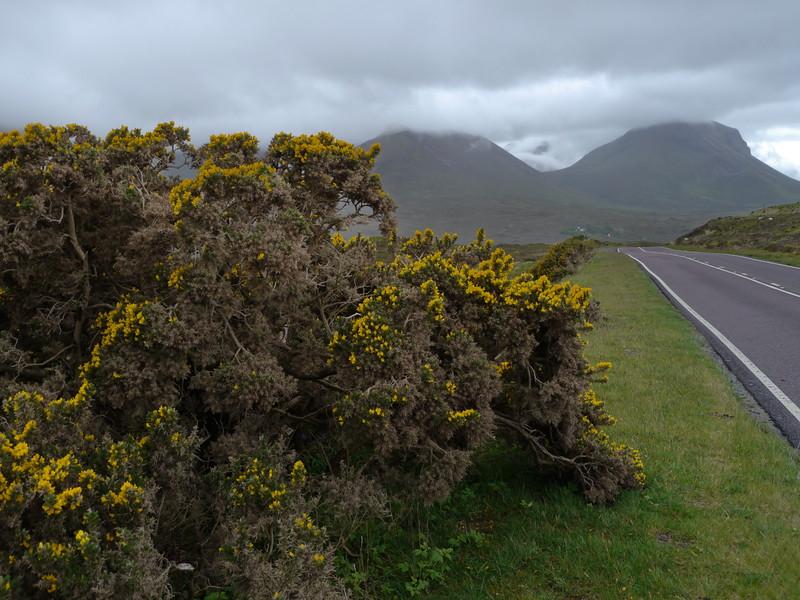 @RobAng Juni 2015 / Sconser, Isle of Skye / Eilean a'Cheo Ward  (Inner Hebridies), Scotland, GBR, Grossbritanien / Great Britain, 75 m ü/M, 2015/06/19 17:27:42