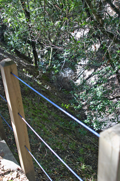 There were a few ravines, like this one, that were steep enough and deep enough--maybe 30 feet deep here--that one COULD dive, but I don't know why diving your head onto damp rocks would be attractive. For most people.