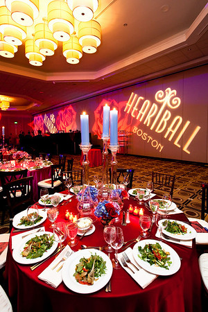 AHA Heartball