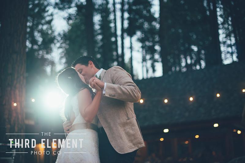 Third Element Photo Co Brittney + Errol Yosemite Wedding Hetch Hetchy San Francisco_0026.jpg