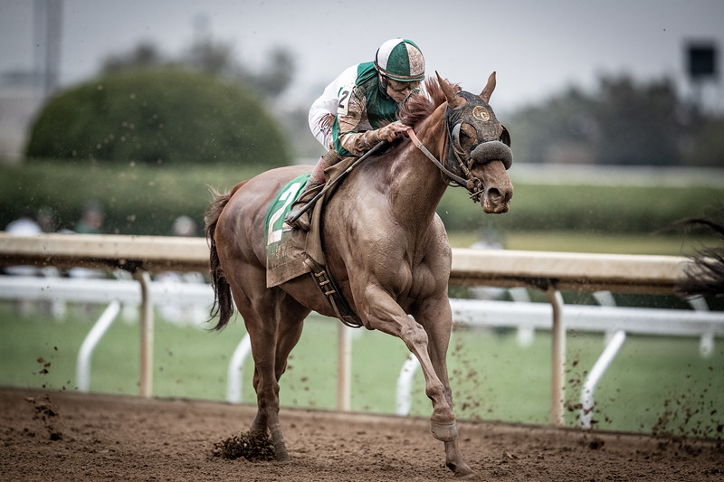 """Blue Prize (Pure Prize) wins the Juddmonte Spinster (G1) a """"Win and You're In"""" Breeders' Cup Distaff Division at Keeneland on 10.06.2019. Joe Bravo up, Ignacio Correas trainer, Merriebelle Stables owner."""