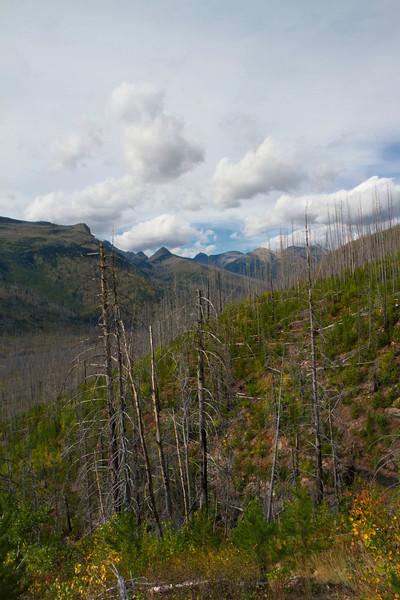 01_Glacier National Park_Montana-34.jpg