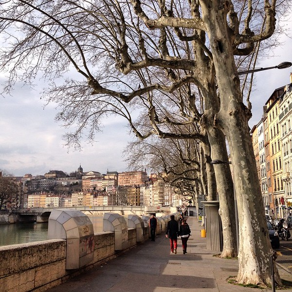 Fine day in Lyon, walking the streets in the shade of knotty pollarded trees. From one side of the Rhône to the other side of the Saône, with an island in between. We walked miles to take it all in and slowly work off multi-course meals. Gearing up for the weekend wine exhibition. via Instagram http://ift.tt/1GB0WOM