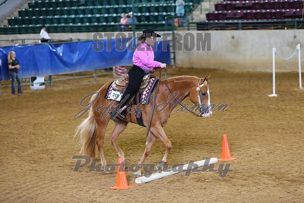 MS Horse Show Association Championship