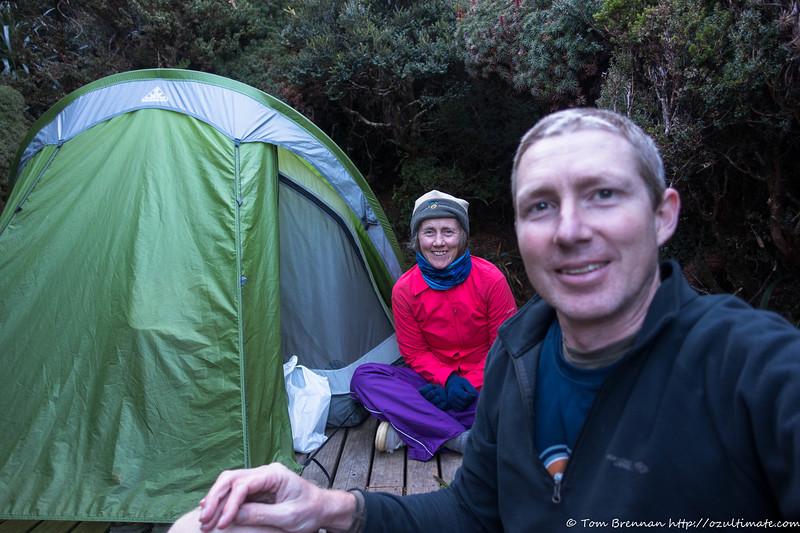 Cosy camp in the scoparia