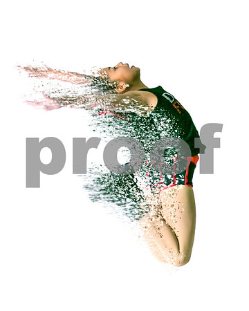 Dance Fusion Studios photoshoot 11/14/17