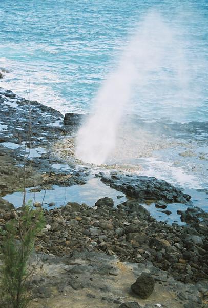 Hawaii-553.jpg