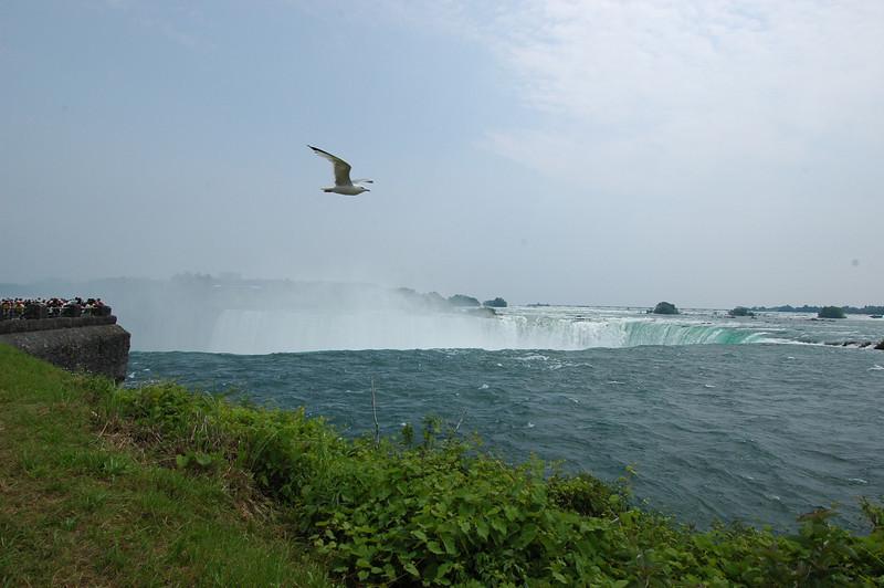 050628 5851 Canada - Toronto - Niagara Falls _E _I _L ~E ~L.JPG