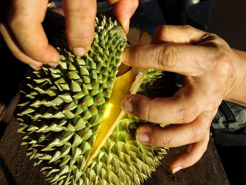 touch-up-opening-Nonthaburi-Ganyao.jpg