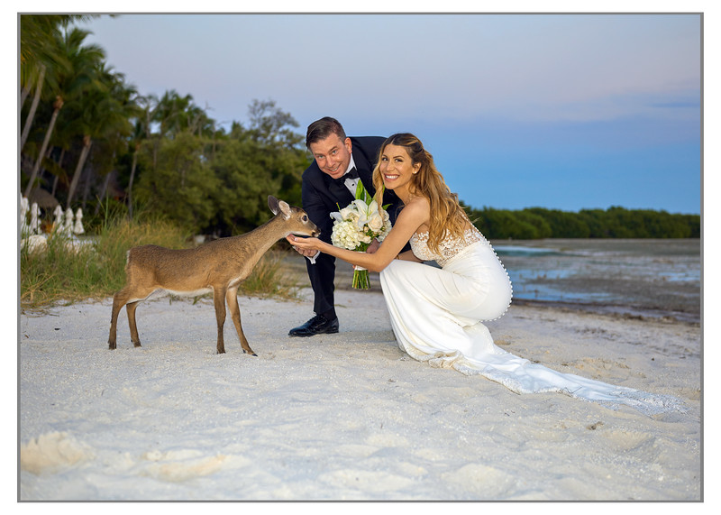 BARBARA AND BART'S ISLAND WEDDING