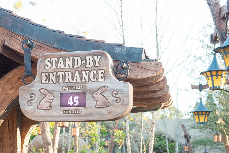 Seven Dwarfs Mine Train Wait - Magic Kingdom Walt Disney World