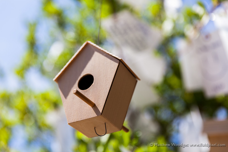 Woodget-140808-053--Bird, bird house, Tree, wooden, wooden box.jpg
