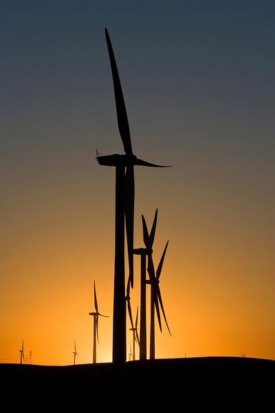 windmill1.jpg