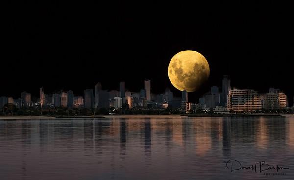 lunar Eclipse ~ January