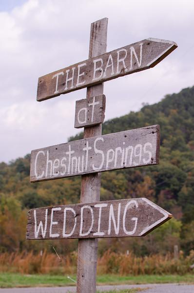 Knoxville Wedding Photographer Wedding050.JPG