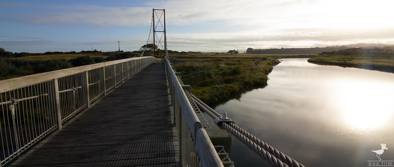 Waiotahi Bridge 3.jpg