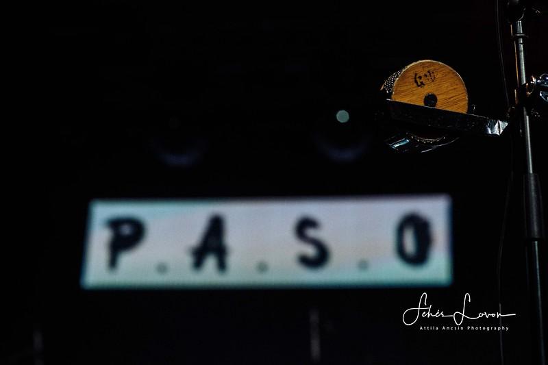 PASO 20200228-2.JPG